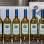 vino bianco 6 bottiglie